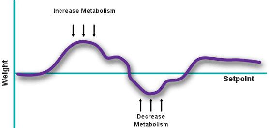 Tips Turun Berat Badan dan Sehat