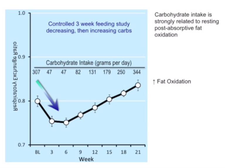 Apa itu Diet Keto dan Amankah Bagi Kesehatan?