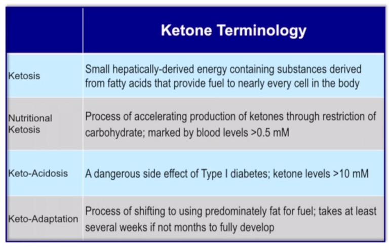 Diet Ketogenic : Sejarah dan Perkembangan Ketogenik serta Masa Depan Keto (Bagian 1)