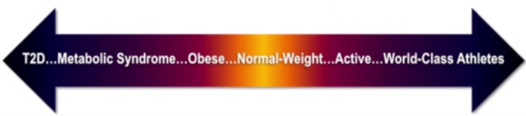Diet Keto Bakar Lemak Paling Cepat? Apa itu Ketogenic Diet by Brodibalo Keto Diet Weight Loss