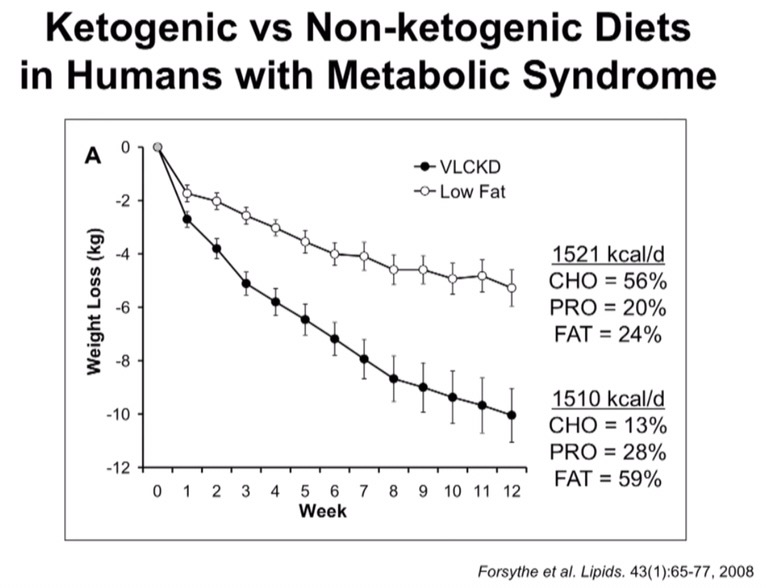 High Cholesterol and the Ketogenic Diet