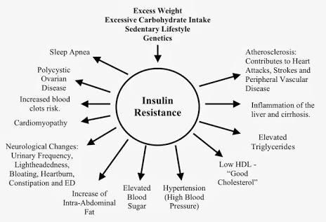 Konsumsi Fruktosa Berlebihan Menyebabkan Obesitas dan Penuaan Organ Liver